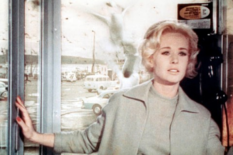 Hollywood Costumes: Tippi Hedren as Melanie Daniels The Birds 1963