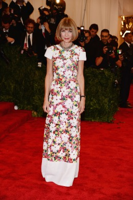 image: Anna Wintour at the 2013 Met Gala
